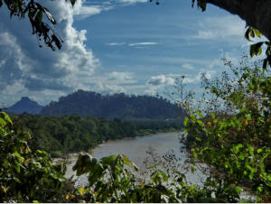 Looking upstream through the tree tops from Kuala Kaboi to Masuli and Langit Hills